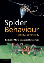 Spider Behaviour