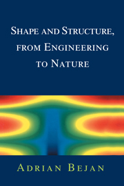 Shape and Structure, from Engineering to Nature