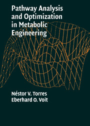 Pathway Analysis and Optimization in Metabolic Engineering