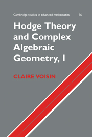 Hodge Theory and Complex Algebraic Geometry I