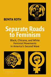 Separate Roads to Feminism
