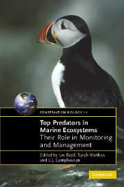 Top Predators in Marine Ecosystems