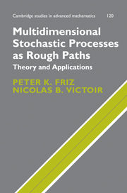 Multidimensional Stochastic Processes as Rough Paths