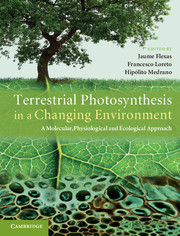 Terrestrial Photosynthesis in a Changing Environment