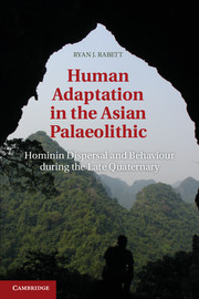 Human Adaptation in the Asian Palaeolithic