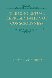 The Conceptual Representation of Consciousness