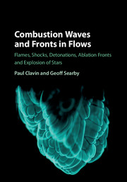 Combustion Waves and Fronts in Flows