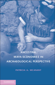 Ancestral Maya Economies in Archaeological Perspective