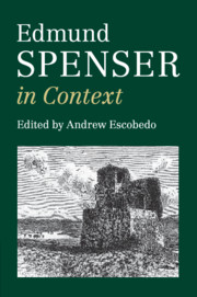 Edmund Spenser in Context