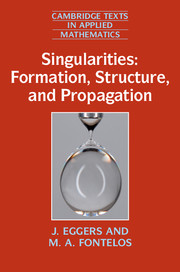 Singularities: Formation, Structure, and Propagation