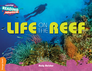 Life on the Reef Orange Band
