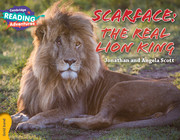 Scarface: The Real Lion King Gold Band
