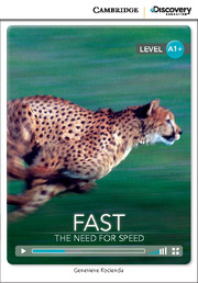 Fast: The Need for Speed High Beginning
