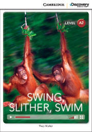 Swing, Slither, Swim Low Intermediate