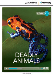 Deadly Animals High Beginning