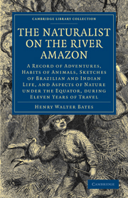 The Naturalist on the River Amazon