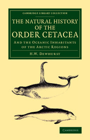 The Natural History of the Order Cetacea