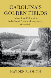 Carolina's Golden Fields