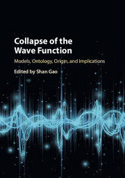 Collapse of the Wave Function edited by Shan Gao