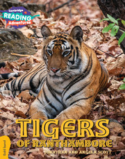 Tigers of Ranthambore Gold Band