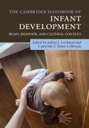 The Cambridge Handbook of Infant Development