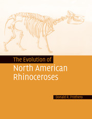 The Evolution of North American Rhinoceroses