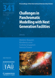 Challenges in Panchromatic Modelling with Next Generation Facilities (IAU S341)