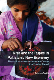 Risk and the Rupee in Pakistan's New Economy