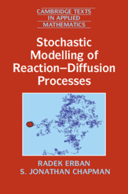 Stochastic Modelling of Reaction–Diffusion Processes