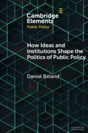 How Ideas and Institutions Shape the Politics of Public