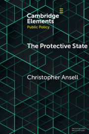The Protective State