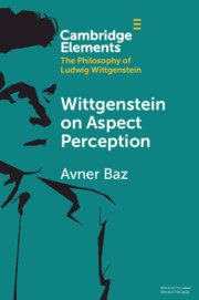 Wittgenstein on Aspect Perception