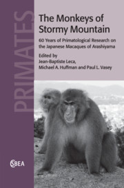 The Monkeys of Stormy Mountain