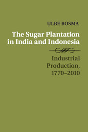 The Sugar Plantation in India and Indonesia