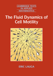 The Fluid Dynamics of Cell Motility