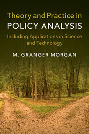 Theory and Practice in Policy Analysis