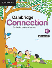Cambridge Connection Level 6